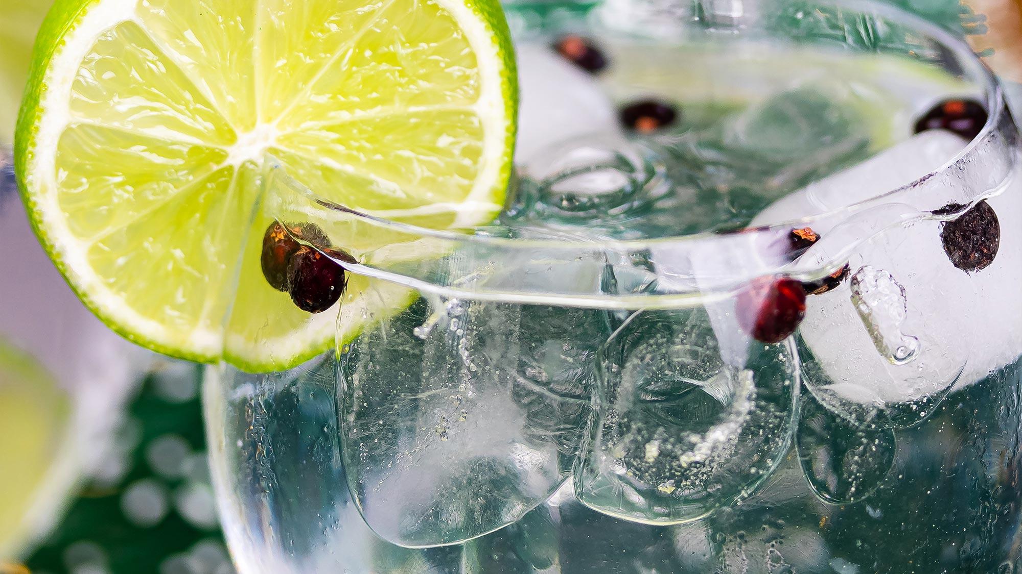 Gin and tonic met jeneverbessen